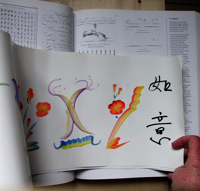 Lettere Cinesi Alfabeto: L'alfabeto Come Famiglia